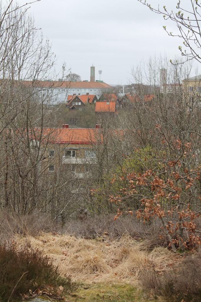Liseberg i bakgrunden